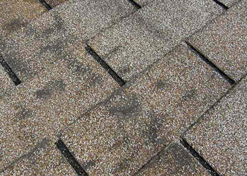 How to Know you Need Roof Repairs
