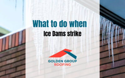 Ice Dams: What to do when Ice Dams strike